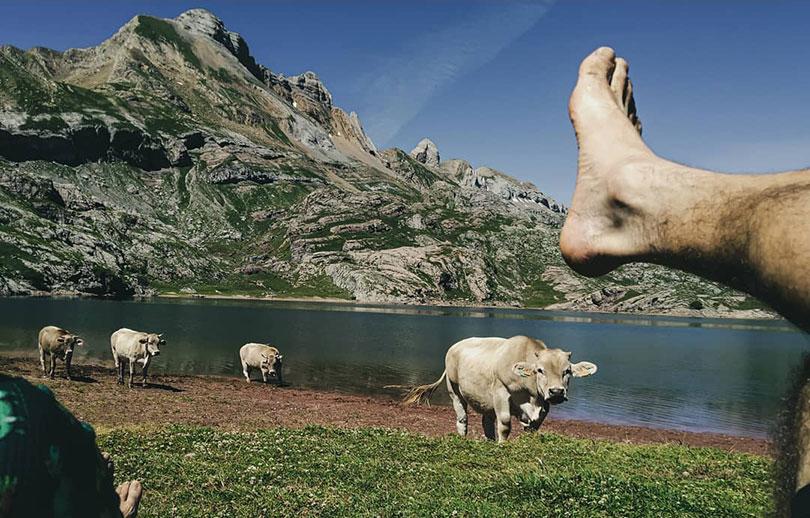 Quien esta detras 1 Vaca, lago y yo en Pirineos